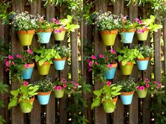 cool potting ideas | PIMP YOUR LIFE: Turn teapots into planters and give your dog a new bed ...