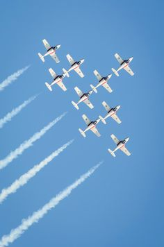 Snowbirds - the Royal Canadian Air Force Air Demonstration Squadron by Laurens Kaldeway