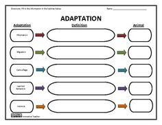 ... on Pinterest | Graphic organizers, Free graphics and Science