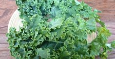 What is kale? Kale consists in two forms: smooth and curly kale. The smooth kale has smooth leaves and the other has crinkle leaves. Kale Soup, Kale Salad, Food For Strong Bones, Le Chou Kale, Detoxification Diet, Raw Apple Cider Vinegar, Can Dogs Eat, Alkaline Diet, Dog Eating