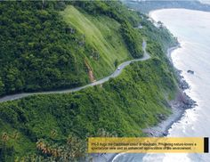 The road to Maunabo   Puerto Rico   Pinterest
