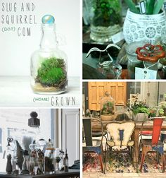 SLUG AND SQUIRREL terrariums {via Nesting Place}