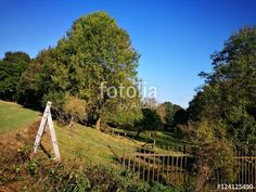 Weidezaun an einer Viehweide in schöner Natur am Barkhauser Weg zwischen Oerlinghausen und Asemissen im Teutoburger Wald in Ostwestfalen-Lippe