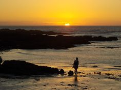 Sunset Small Bay The Village Bloubergstrand Cape Town Ocean Sunset, Fishing Villages, Most Beautiful Cities, Cape Town, Old Houses, South Africa, Surfing, City, World
