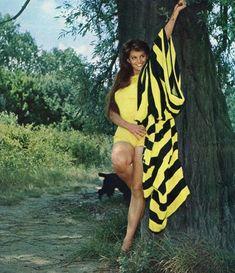 "The photo ""Claudia Cardinale"" has been viewed 216 times. Claudia Cardinale, Merle Oberon, Shirley Jones, Veronica Lake, Italian Actress, Old Actress, Judy Garland, Vintage Hollywood, Hollywood Glamour"