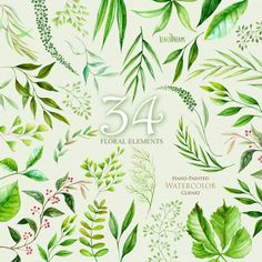 Floral Elements leaves foliage herbs wedding invitation