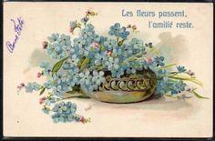 CF186-COUPE-de-MYOSOTIS-Gaufree-Embossed