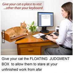 Haha this could be useful!