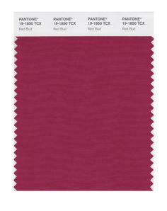 PANTONE SMART 19-1760X Color Swatch Card,Amazon.com + Red Bud