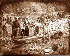 California Gold Rush Unit Study: books, movies, activities