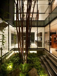 love when nature is incorporated into design, like in this modern atrium