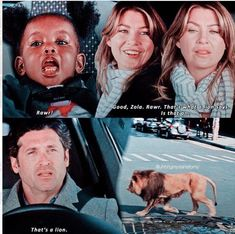 """They were so chill about a lion walking across the street right in front of them ♀️"""" Greys Anatomy Episodes, Greys Anatomy Funny, Grey Anatomy Quotes, Grays Anatomy, Greys Anatomy Zola, Anatomy Humor, Derek Shepherd, Meredith And Derek, Meredith Grey Quotes"""