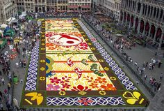 """Un """"tappeto"""" floreale fatto di 600.000 petali ha invaso la piazza di Bruxelles"""