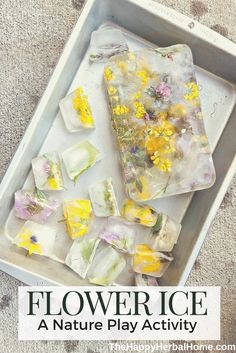 Flower Ice – The Nature Play Series – The Happy Herbal Home – Natural Playground İdeas Nursery Activities, Toddler Learning Activities, Montessori Activities, Infant Activities, Forest School Activities, Nature Activities, Spring Activities, Internet Marketing, Media Marketing