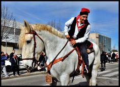 Rua 2014 - El cavall més gran que he vist a la meva vida, muntat per un marroquí amb barretina.