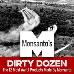 Worse than the Dirty Dozen are Monsanto's Dirty Dozen! Learn what they are here: http://eatlocalgrown.com/article/13625-12-most-awful-products-made-by-monsanto.html?c=ngr #Monsanto #StopMansanto #DirtyDozen