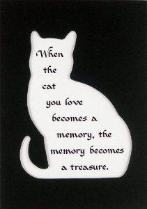Cat Memory Treasure Memorial Wall Decor Poem Pet Saying