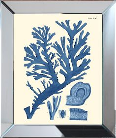 Navy Sea Urchin Framed Wall Art-Available in Four Different Sizes. Product in photo is from www.wellappointedhouse.com
