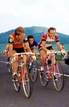 Hennie Kuiper, Bernard Hinault & Joop Zoetemelk - Tour de France 1978