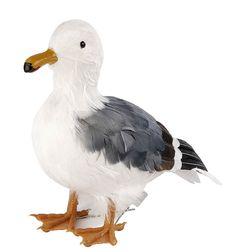 Standing Seagull - Seagulls Sea Birds