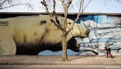polar bear graffiti mural buenos aires alfredo segatori muralista ba street art pelado buenosairesstreetart.com