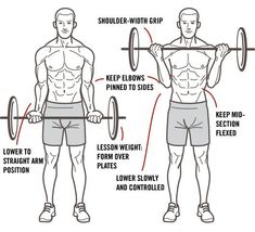 Сorrect exercises: ascent to the bicep