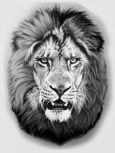 Leo Lion Tattoos, Mens Lion Tattoo, Animal Tattoos, Abstract Pencil Drawings, Animal Drawings, Lion Tattoo Design, Tattoo Designs, Lion Head Drawing, Lion Shoulder Tattoo