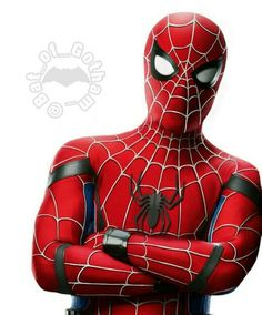 Spiderman homecoming suit mashed up with the original Spiderman suit.