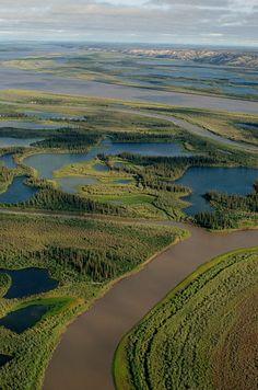 Mackenzie River & Delta near Inuvik. N.W.T.