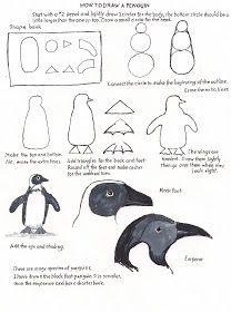 how to draw a penguin step by step realistic