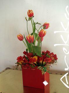 Tulipanes + Freezia