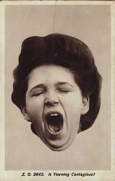 Is yawning contagious? That would be yes.