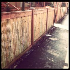 Bamboo Fences this look is really nice & fresh and will last longer!