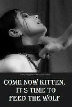 Come now kitten...