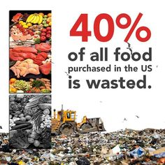 Wasted Food...40%. So 40% of the aridable land is wasted?