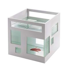 """Student of the Carleton University's School of Industrial Design in Ottawa, Teddy Luong is the winner of the Canadian Build a Better Competition for his reinvented aquarium, which is modeled after a contemporary condo"