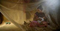 Le gouvernement du Népal n'agit pas suffisamment pour mettre fin aux mariages d'enfants, nuisant gravement aux filles ainsi qu'aux garçons de ce pays, a déclaré Human Rights Watch dans un rapport publié aujourd'hui. En juillet 2014, le gouvernement népalais s'était engagé à mettre fin au mariage des enfants d'ici 2020. En 2016, cet objectif avait déjà été repoussé à 2030. Mais le gouvernement n'a pas encore pris de mesures concrètes pour atteindre cet objectif, à quelque date que ce soit.