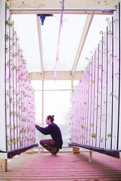 Impact Farm is a ready-made agriculture kit that shows up in an old shipping container.