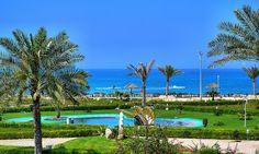 Damoon, Kish Island In Persian Gulf. Iran