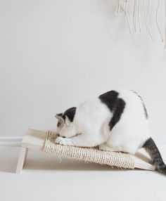 DIY: Simple scratching post for your cat | 9 Simple and stylish DIY-projects your pet will love!