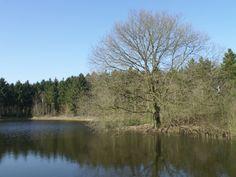 In het waterwingebied De Schommeling te Sint Jansteen.................lbxxx.