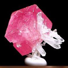 rhodocrosite with quartz