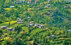 Banjar Valley #KULLU #kasol #himachal #travel