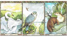 Vajon neked mit üzen a személyes kelta tarot kártyád? Érdemes a tanácsokat megfogadni. Erika, Mantra, Feng Shui, Painting, Horoscope, Art, Art Background, Painting Art, Kunst