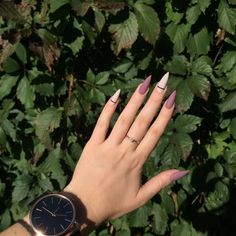 Cute Nails, Pretty Nails, Pig Nails, Short Square Nails, Vintage Nails, Summer Acrylic Nails, Nails Tumblr, Powder Nails, Nails Inspiration
