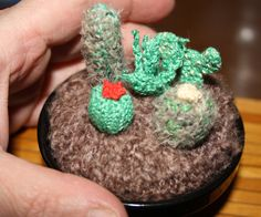 Handmade Crochet / crocheted cactus collection a selection of miniature plants a garden in a pot , pin cushion, cuddly cactus ornament by GeorgeandRoscreation on Etsy