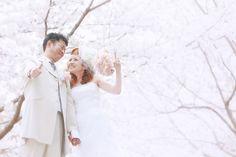 桜満開の結婚フォト。大阪府大阪市のとあるロケ地で洋装ロケーションウェディング。