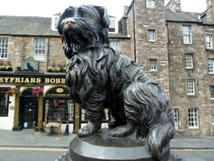 Except Greyfriars Bobby. What a hero.