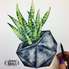 So happy with results of this Haworthia Fasciata (a.k.a. Zebra succulent) in a Concrete Polyhedron planter Inspired by my fellow @etsy seller @roughfusion awesome planters!
