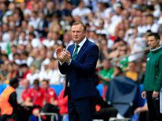 Fifa Football, Uefa Euro 2016, Fictional Characters, Fantasy Characters